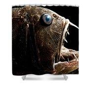 Deep Sea Fangtooth Shower Curtain