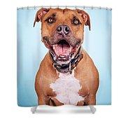 Dexter Shower Curtain