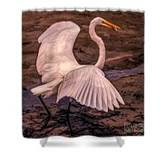 Egret With Fish Shower Curtain