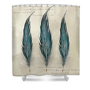 3 Feathers And Quote Shower Curtain