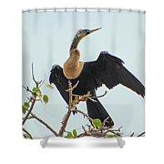 Female Anhinga Shower Curtain