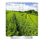 Field Shower Curtain