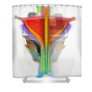 Figure Shower Curtain
