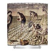 Florida Native Americans, 1591 Shower Curtain