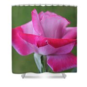 Flower Series Shower Curtain