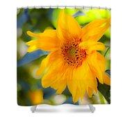 Flowering Garden.  Shower Curtain
