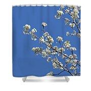 Flowering Trees Shower Curtain