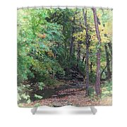 France Park Shower Curtain