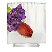 Freesia And Tulip Shower Curtain