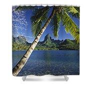French Polynesia, Moorea Shower Curtain