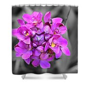 Fuchsia Ground Orchid Shower Curtain