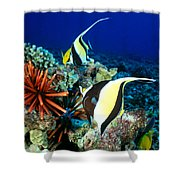 Hawaiian Reef Scene Shower Curtain