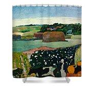 Haystacks In Brittany Shower Curtain