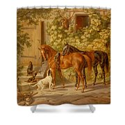 Horses At The Porch Shower Curtain
