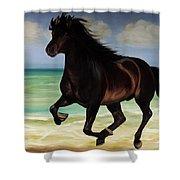 Horses In Paradise  Run Shower Curtain