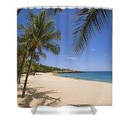 Hulopoe Beach, Palm Tree Shower Curtain