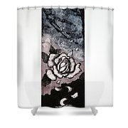 3 In 1 Shower Curtain