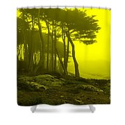 Lands' End Shower Curtain