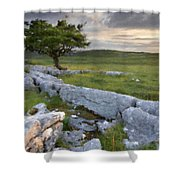 Landscape By Shower Curtain