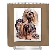 Lhasa Apso Triple Shower Curtain
