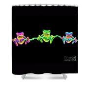 3 Little Frogs Shower Curtain