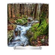 Little Laurel Branch Shower Curtain