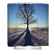 Lone Tree In Snow Shower Curtain