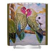 Flygende Lammet   Productions             3 Love Birds Perched Shower Curtain