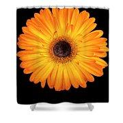 Macro Shot Of Flower Shower Curtain