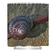 Oregon Snail Shower Curtain