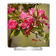 Paradise Apples Flowers Shower Curtain