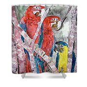 3 Parrots Shower Curtain