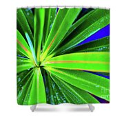 Plants And Flowers In Hawaii 547 C Shower Curtain