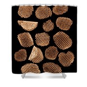 Potato Chips, X-ray Shower Curtain