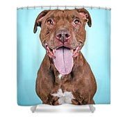 Queeny Shower Curtain