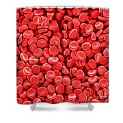 Red Blood Cells, Sem Shower Curtain