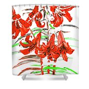 Red Lilies, Hand Drawn Painting Shower Curtain