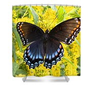 Red-spotted Purple Shower Curtain