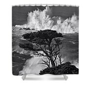 Seascape 11 Shower Curtain