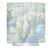 Siberian Dogs In The Snow Shower Curtain