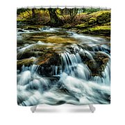 Spring Along Anthony Creek Shower Curtain