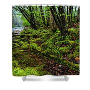 Spring Along Elk River Shower Curtain