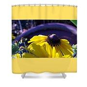 Sun Glory Series Shower Curtain