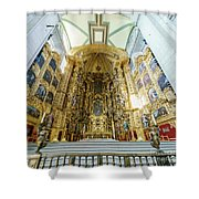 The Historical Mexico City Metropolitan Cathedral Shower Curtain