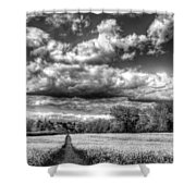 The Summers Day Farm Shower Curtain