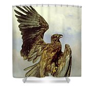 The Wounded Eagle Shower Curtain