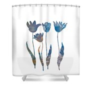 Tuilps Shower Curtain