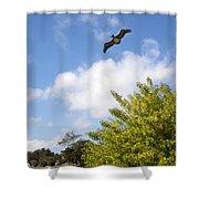Turkey Creek In Palm Bay Florida Shower Curtain