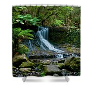 Waterfall In Deep Forest Shower Curtain