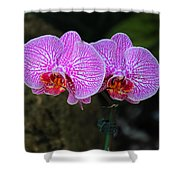 Wild Whispers Shower Curtain